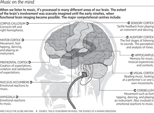 brain-and-music