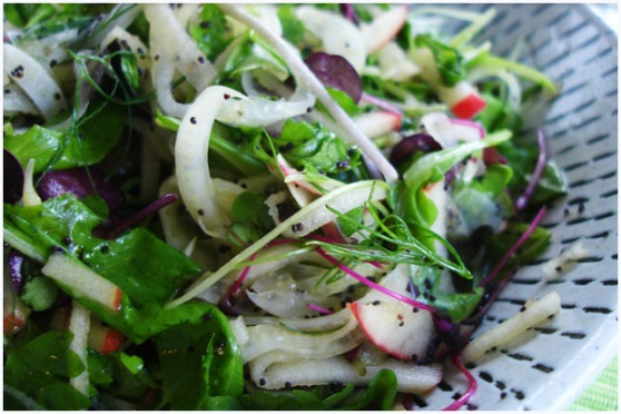 197-micro-green-fennel-apple-salad-greenchef-natalia-02